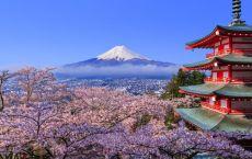 Девичник в Японии