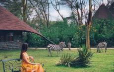 Девичник в Кении: сафари «Успеть за 7 дней»