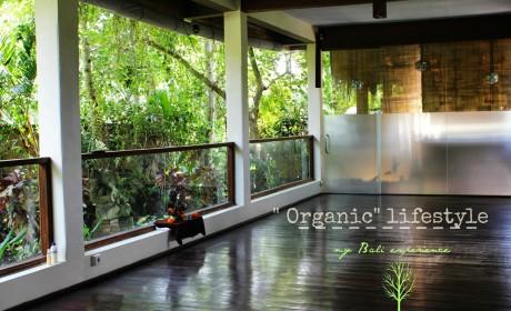 «Organic» lifestyle, my Bali experience или история одного лентяя