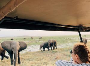Фотоотчет о travel-девичнике в Кении и Танзании, август 2019