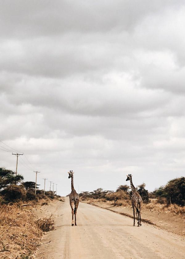 botswana-girlsintravel