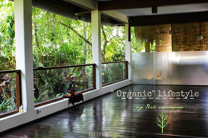"""Organic"" lifestyle, my Bali experience или история одного лентяя"