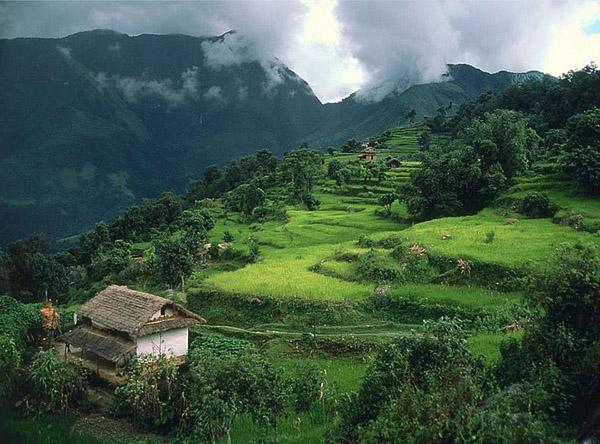 nepal-anapurna-16