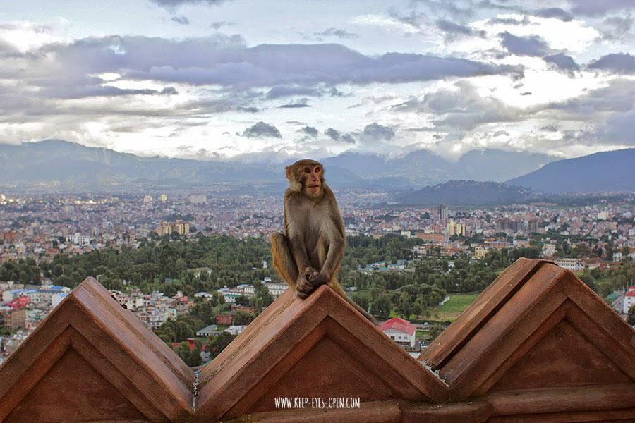 nepal-trip-2014-29