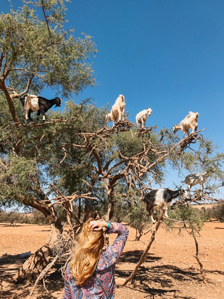 morocco-girlsintravel-32