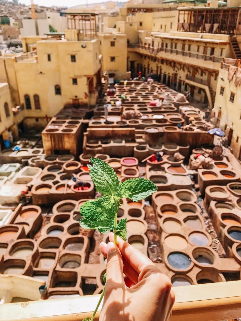 morocco-girlsintravel-53