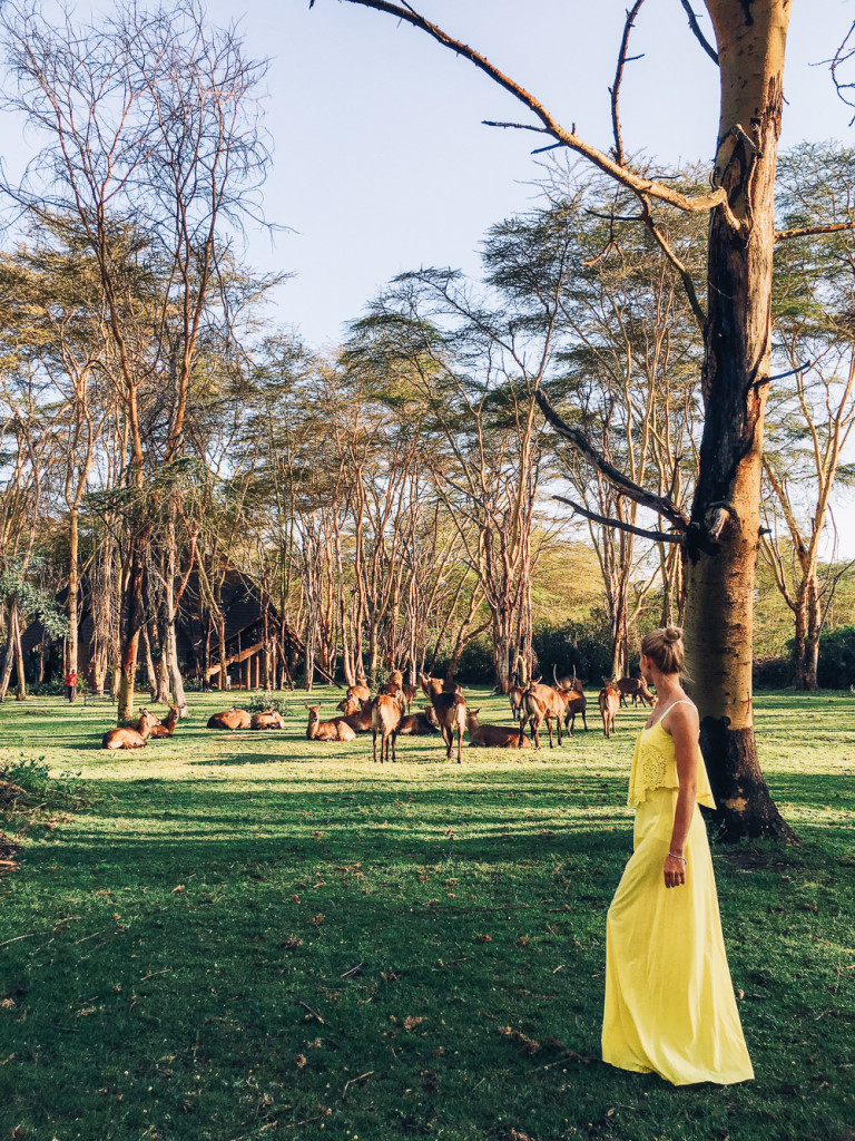 kenya-tanzania-girlsintravel-12