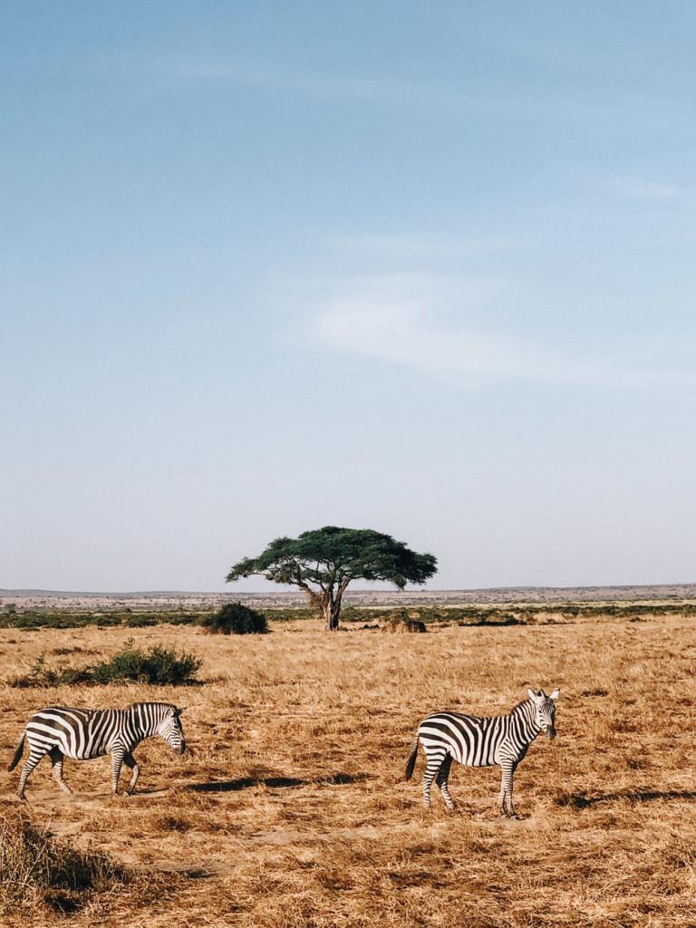 kenya-tanzania-2018-girlsintravel-2